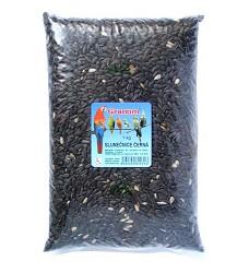 Granum slunečnice černá, 10x 1kg, cena za 1ks