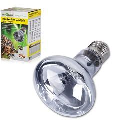 ReptiZoo Neodymium Daylight žárovka, 75W