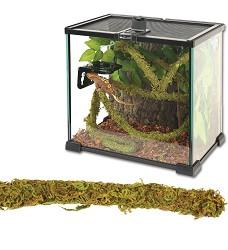 ReptiZoo Jungle Vines Liána s mechem, 1,5x200cm